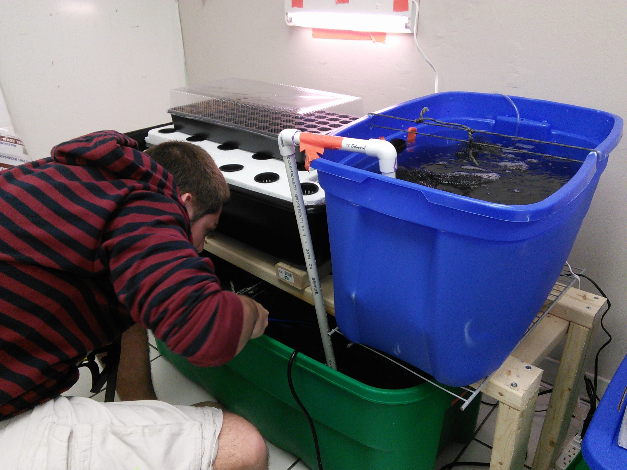 Photo of Launching an Aquaponics Startup through the Student Business Incubator