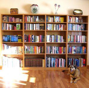 Dr. Dorfeld's bookshelves
