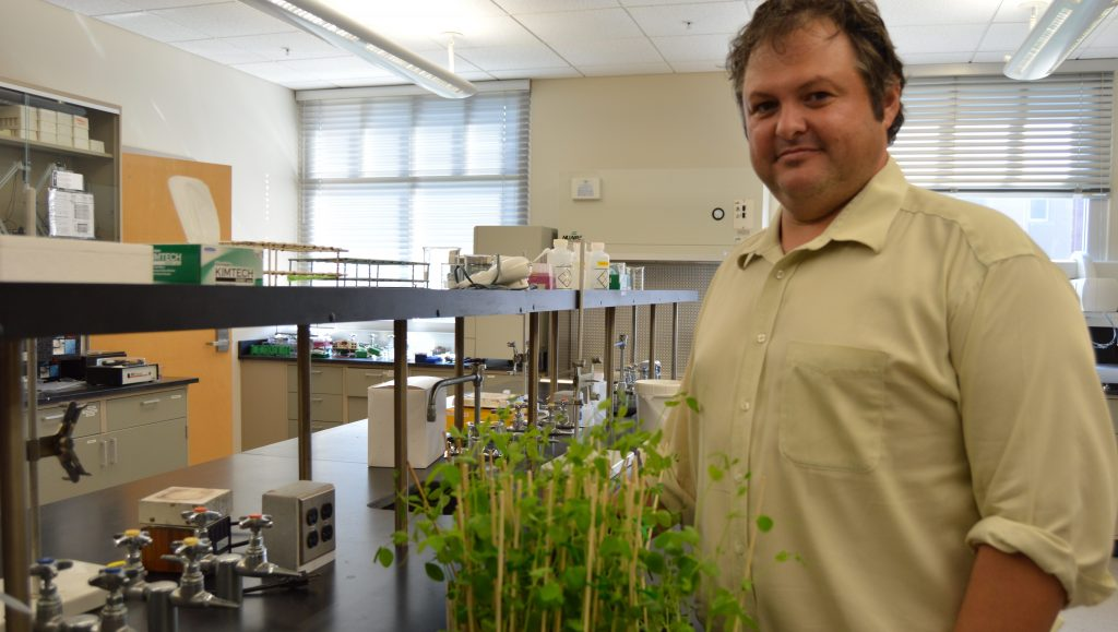 Dr. Palmer grows a Florida Tech Mars Garden