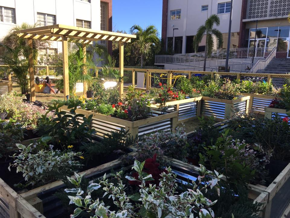 Photo of Donors Help Establish, Grow Florida Tech's Ethos Community Garden