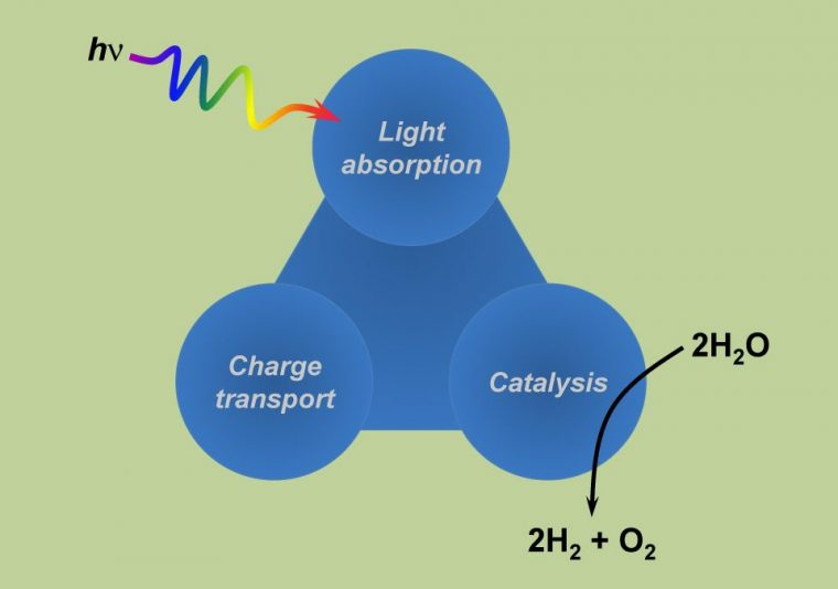 Photo of Mimicking Photosynthesis Could Be the Best Way to Power the World