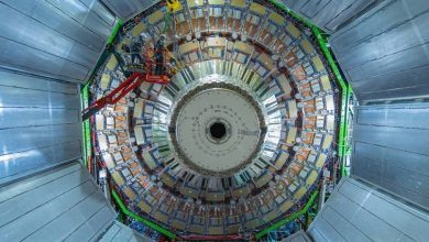 Photo of Florida Tech Hardware Installed in Large Hadron Collider