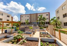 Photo of Florida Tech Named a 'Green College' by Princeton Review