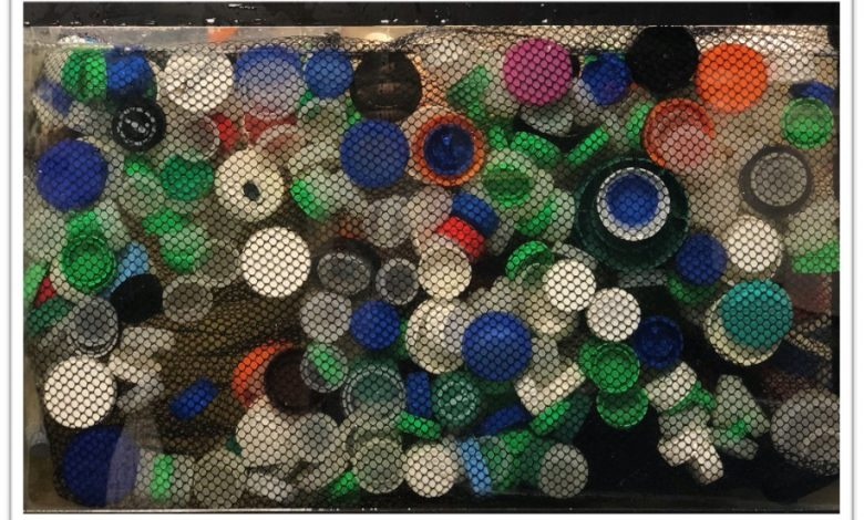Photo of Improving Lagoon Water with Bottle Caps