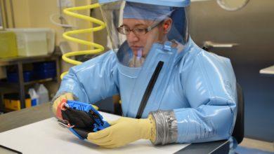 Photo of Molecular Biology Alumna Helps Develop Ebola Virus Rapid Test