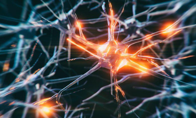 Photo of Machine Learning May Help Understand Neurodegenerative Diseases